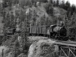 b and w short freight.jpg