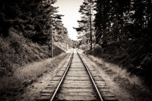 4544193-53997-old-sepia-railroad-tracks-going-through-a-forest.jpg